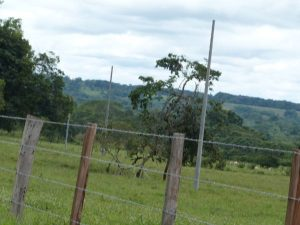 Electrificacion-Puerto-Gaitan-036